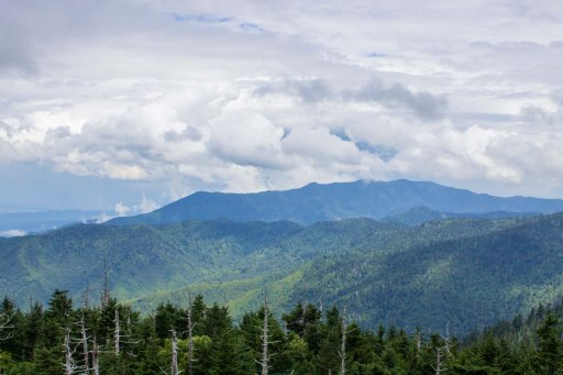 Clingman's Dome View 2