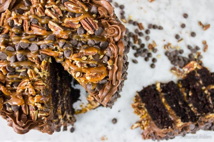 chocolate_turtle_cake-2