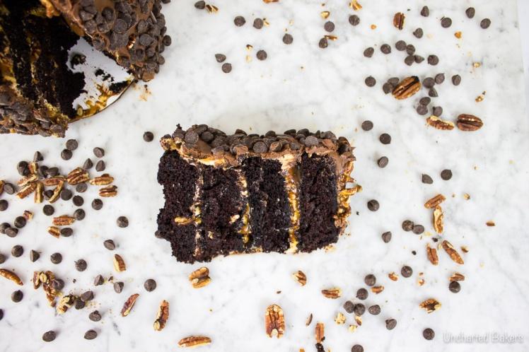 chocolate_turtle_cake-3
